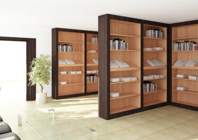 Infografia Biblioteca. Grupo BUK